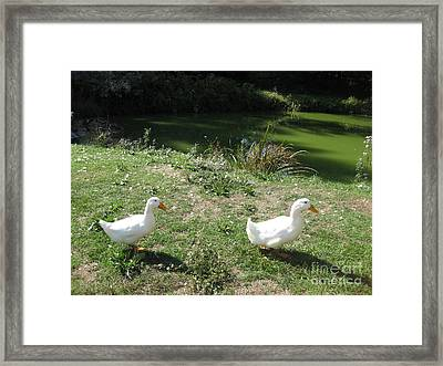 Mr. And Mrs. White Have A Green Day Framed Print