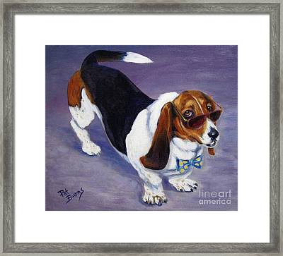 Framed Print featuring the painting Mr Cool by Pat Burns