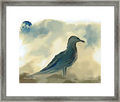 Mr. Jonathon Seagull Of La Jolla California Framed Print by Sherri  Of Palm Springs