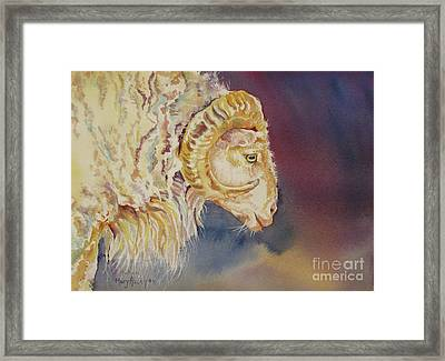 Framed Print featuring the painting Mr. Ram by Mary Haley-Rocks