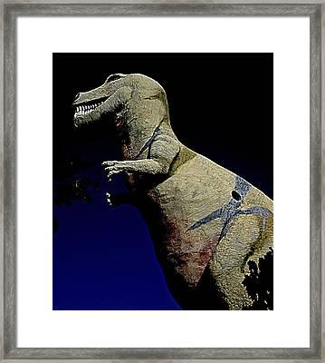 Mr. Rex 3 Framed Print by Randall Weidner