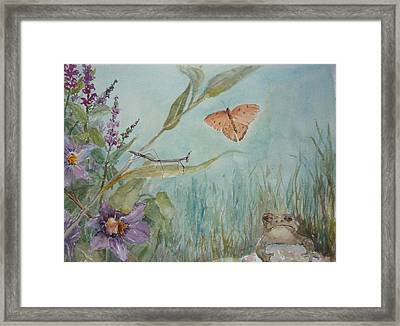 Mr. Toad Framed Print by Dorothy Herron