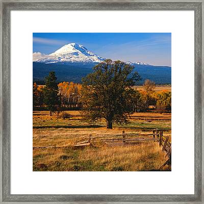 Mt. Adams Autumn Framed Print