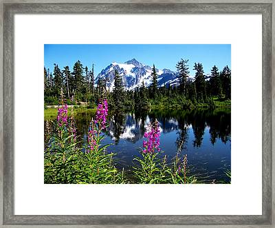 Mt. Baker Reflections Framed Print by Glenn McCurdy