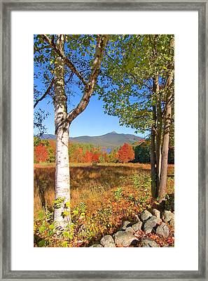 Mt. Chocorua Autumn Vertical Framed Print by Larry Landolfi