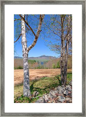 Mt. Chocorua Spring Vertical Framed Print by Larry Landolfi