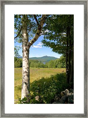 Mt. Chocorua Summer Vertical Framed Print