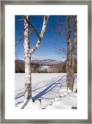 Mt. Chocorua Winter Vertical Framed Print by Larry Landolfi