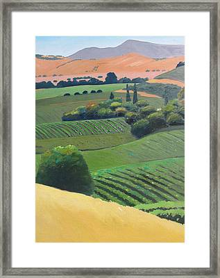 Mt. Diablo 2 Framed Print by Gary Coleman