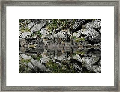 Mt Five Framed Print by Arlyn Petrie