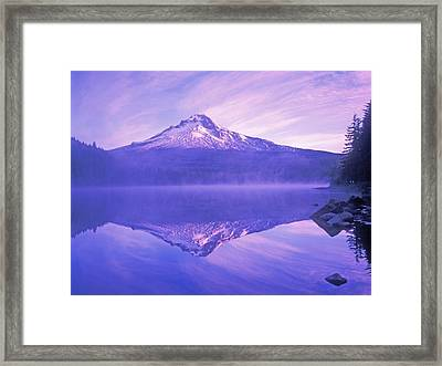 Mt. Hood And Trillium Lake Mt Hood Framed Print by Dan Sherwood