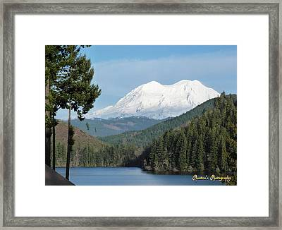 Framed Print featuring the photograph Mt. Rainier From Mineral Lake by Sadie Reneau