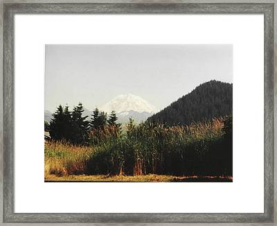 Framed Print featuring the photograph Mt. Rainier In Hiding by Sadie Reneau