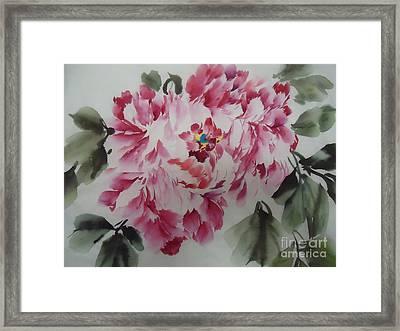 Mudan Framed Print by Dongling Sun