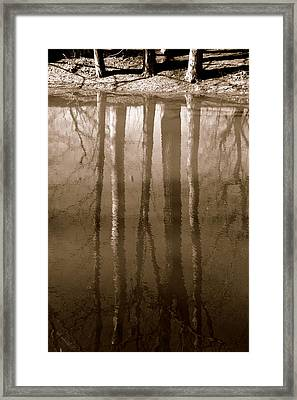 Muddy Waters Framed Print by Ed Smith