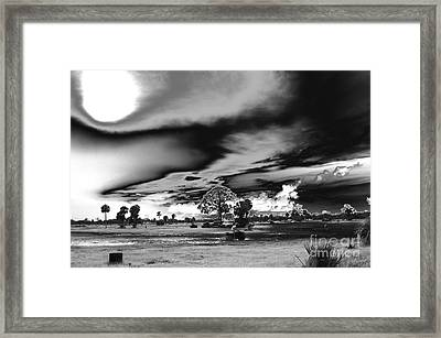 Mudjam In Black And White  Framed Print by Don Youngclaus