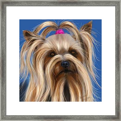 Muffin - Silky Terrier Dog Framed Print by Michelle Wrighton