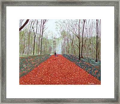 Mullaghmeen Forest In Autumn Time Framed Print