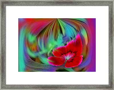 Multi Color Floral Abstract Framed Print by Linda Phelps