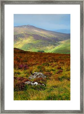 Multicolored Hills Of Wicklow. Ireland Framed Print by Jenny Rainbow