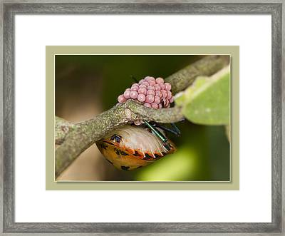 Framed Print featuring the digital art Mum To Be Two 01 by Kevin Chippindall