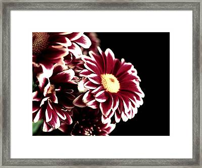 Mums In A Vase Framed Print by Cathie Tyler