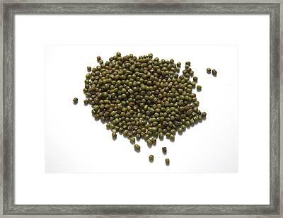 Mung Beans Framed Print by Victor De Schwanberg