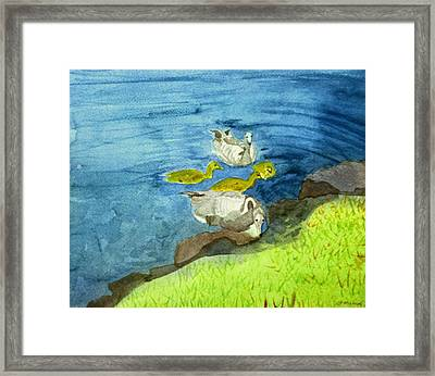 Munich Geese Framed Print by Charlotte Hickcox