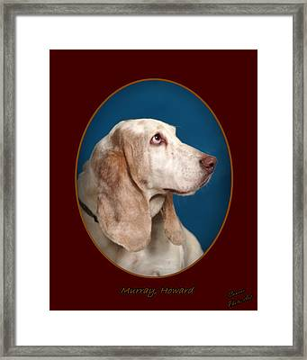 Murray Howard Framed Print by Antonio Brito