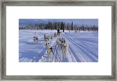 Mush Hour Framed Print by Donna Quante