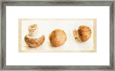 Mushroom Trio Framed Print by Edward Fielding