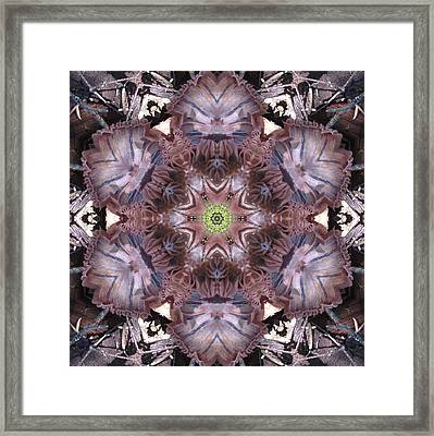 Mushroom With Green Center Framed Print