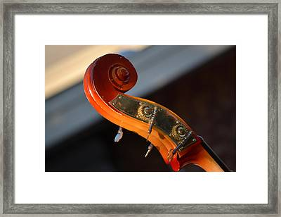Framed Print featuring the photograph Music by Rima Biswas