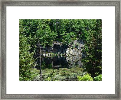 Muskoka Pond Framed Print