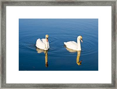 Muted Framed Print
