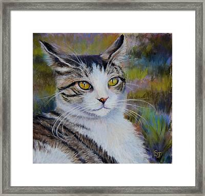 My Beautiful Cat Framed Print