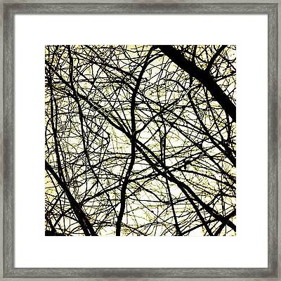 My Father Used To Paint And At Times Framed Print