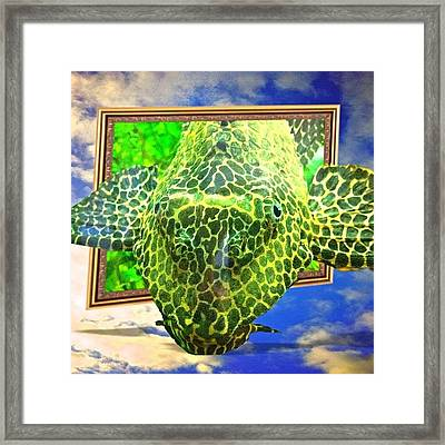My First Experiment With Out Color 2 An Framed Print