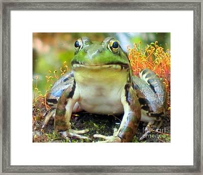 My Frog Friend Framed Print by Patricia Januszkiewicz