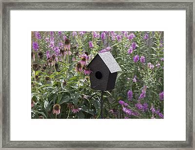 My Garden 7 Framed Print