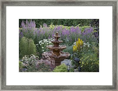 My Garden 8 Framed Print