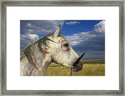 My Indian Pony Framed Print