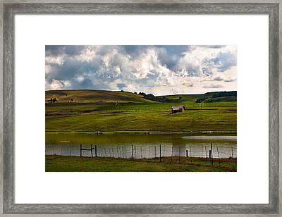 My Little Hut In The Midlands Framed Print by Miguel Capelo