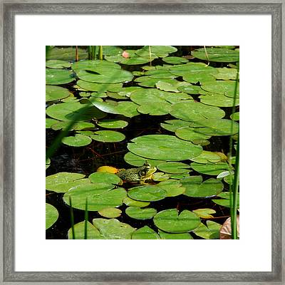 My Pad Or Yours Framed Print