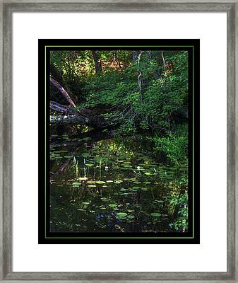 My Peace I Give You Framed Print by Matthew Green