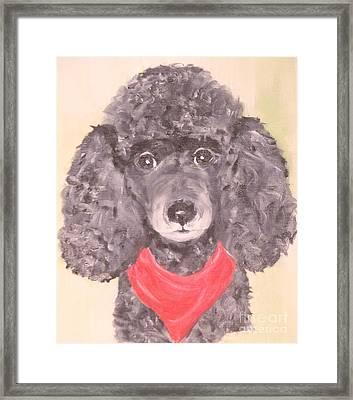 My Red Bandana Framed Print by Rachel Carmichael