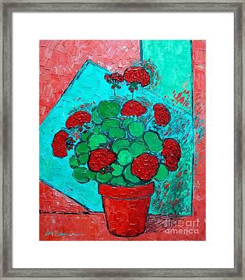 My Red Geranium Framed Print by Ana Maria Edulescu