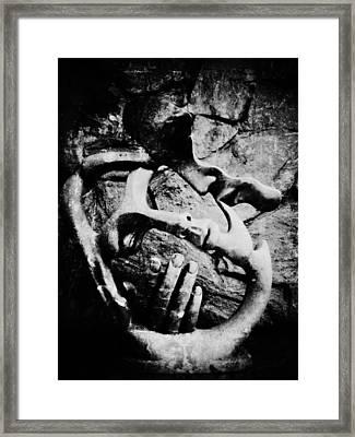 My Rock Framed Print by Empty Wall