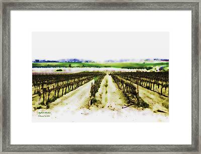 Framed Print featuring the photograph My Well-beloved Had A Vineyard by Itzhak Richter