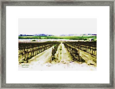 My Well-beloved Had A Vineyard Framed Print by Itzhak Richter